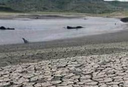 Almost all provinces in Cambodia facing drought: meteorology official